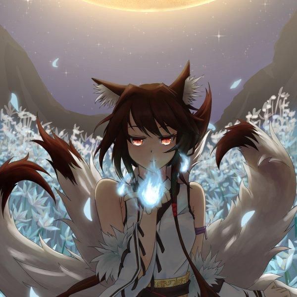 月下青丘狐