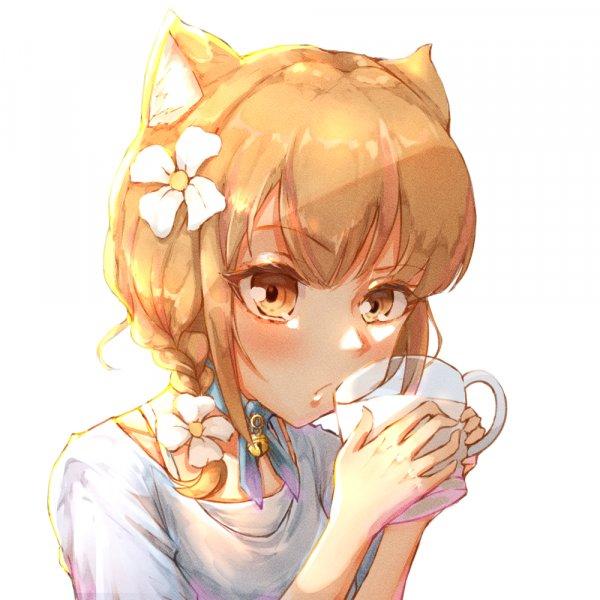 偷喝牛奶的貓